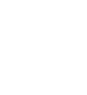 Verchiel footer white logo