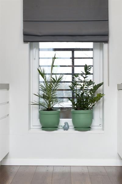 tropická zelená Newcolours
